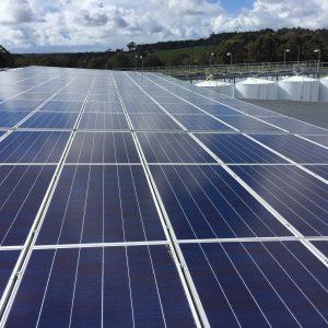 Vasse Felix Winery Solar Panels Completed